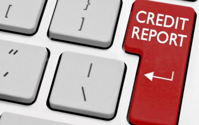 Constituent Credit Total Report